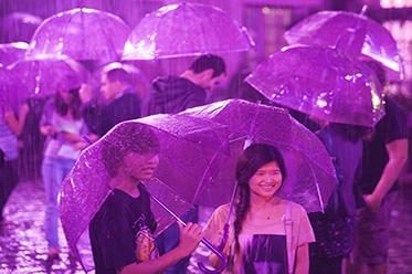 Purple Rain_Martin Argyroglo