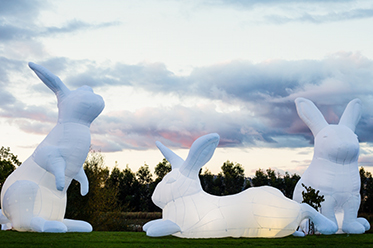 Interlude by Amanda Parer