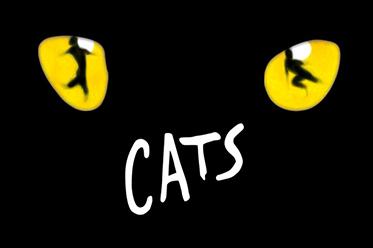 CATS_editorial