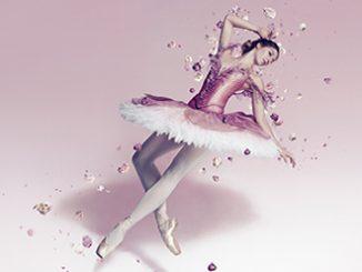 Australian Ballet The Sleeping Beauty Justin Ridler