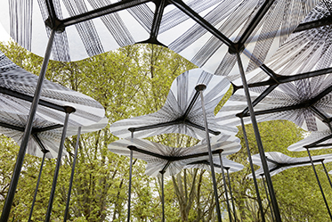 MPavilion photo by John Gollings