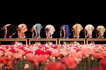 AFA Nelken Tanztheater Wuppertal Pina Bausch