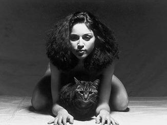 Martin HM Schreiber Madonna 1979