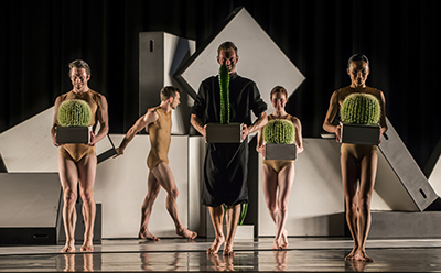 Sydney Dance Company Cacti photo by Peter Greig