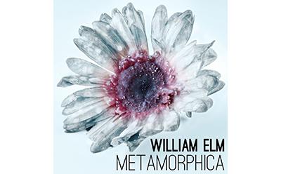 William Elm Metamorphica