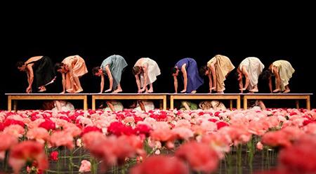 Adelaide Festival 2016 Tanztheater Wuppertal Pina Bausch, Nelken