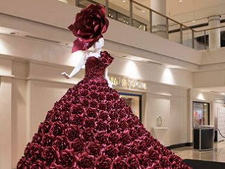 Zie Bradley The Red Rose Dress Chatswood Chase Sydney