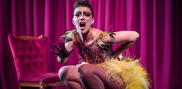 Karla Hillam Ugly Duckling