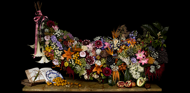 Robyn Stacey,Mr Macleay's fruit and flora,2008