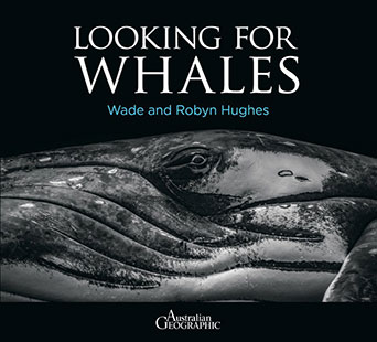 Halstead Press Wade and Robyn Hughes Looking For Whales