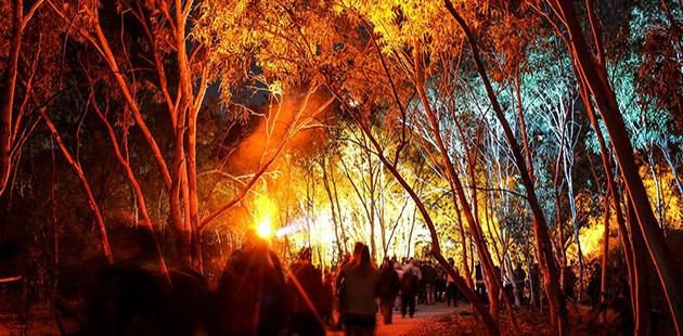 Incite Arts, Unbroken Land, Alice Springs Desert Festival - photo by Oliver Eclipse (courtesy of Australia Council)