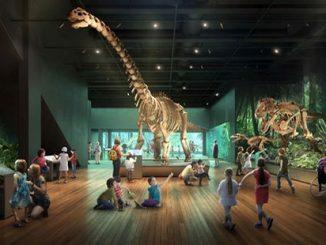 Australian-Museum-(AM)