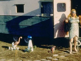 Pink-Flamingos-courtesy-of-New-Line-Cinemas