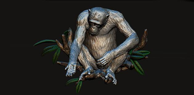 David-Greybeard-by-Artist-Lisa-Roet-CAD-image-courtesy-Airena-(Felipe-Reynolds)