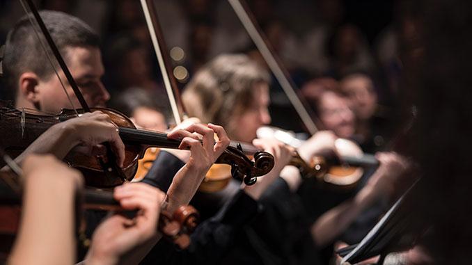 Violins-Larisa-BirtaonUnsplash