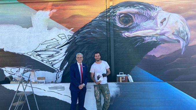 Birds-Eye-Mural-Project-Danny-Pearson-Andrew-J-Bourke