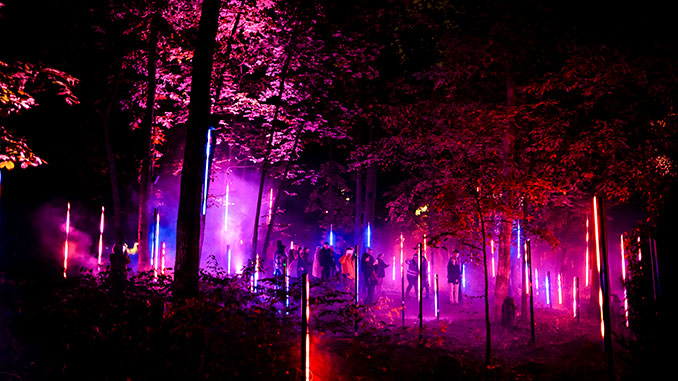 North-Forest-Lights---Created-by-Moment-Factory