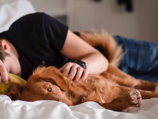 A-person-sleeping-with-a-dog-photo-by-Jamie-Street-on-Unsplash