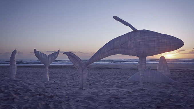 AAR-SWELL-Sculpture-Festival-Sam-Gowing-Whale-Playground-photo-by-Lex-Imagery